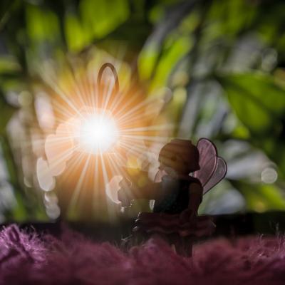 Case #12 : Magic lantern