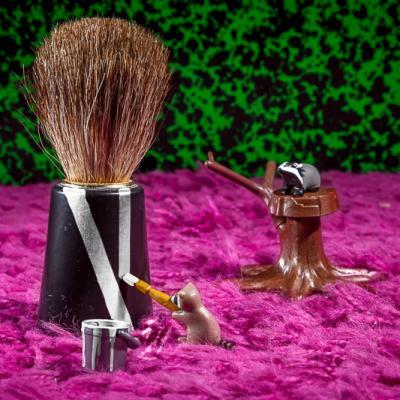 Case #14 : Blaireaux et raton-laveur